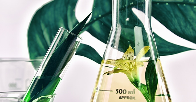 ingredientes cosmética natural